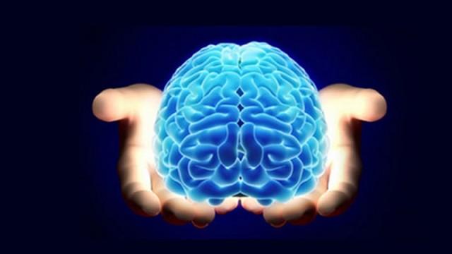 Akıllı telefonların insan beynine etkisi!