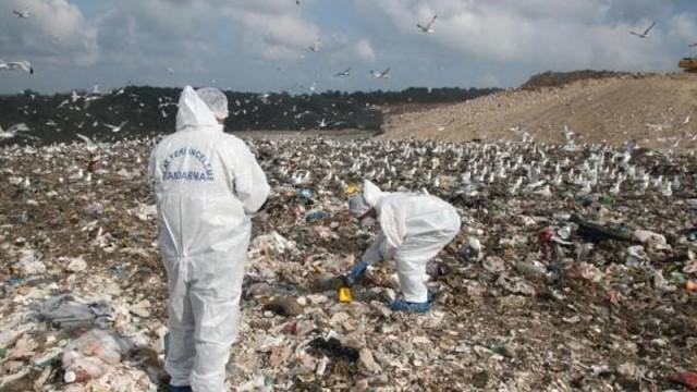 İstanbul'da çöplükten vahşet çıktı