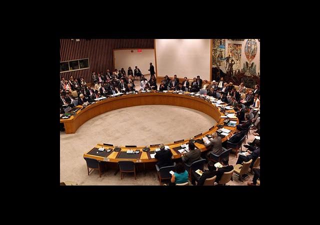 BM Güvenlik Konseyi'neYeni Üyeler