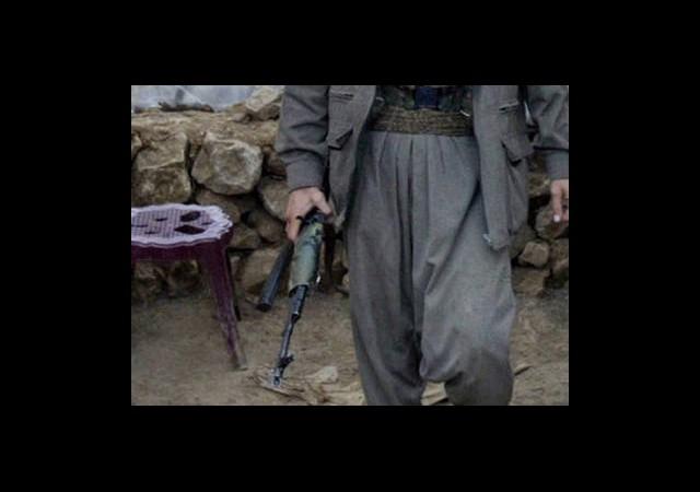 Ağrı'da Üç Terörist Yakalandı