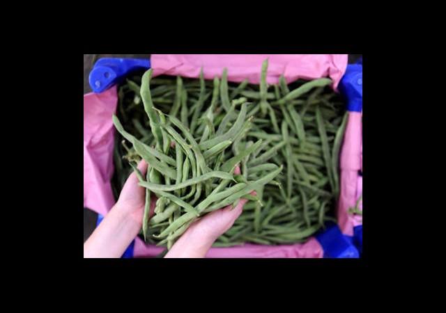 En Fazla Yeşil Fasulyenin Fiyatı Arttı
