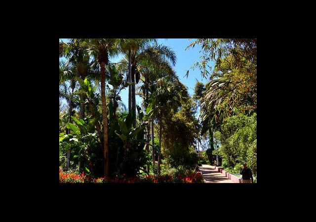 Fas'ta Muhteşem Bahçeler