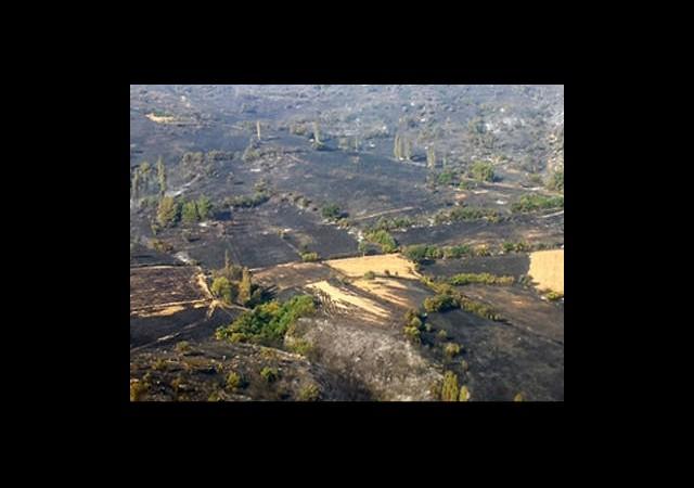 Yanan Ormanlık Alan Havadan Görüntülendi