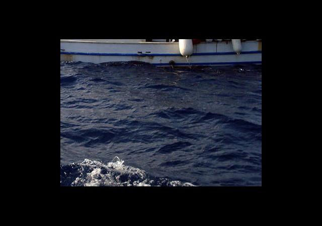 Marmaris Körfezinden Tehlike Sinyalleri