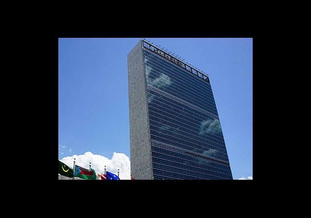 BM Gözlemci Göndermek İstiyor