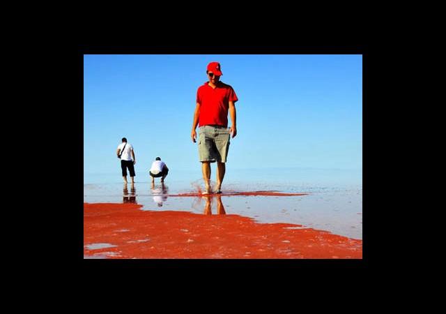 Tuz Gölü'ndeki 'Kızıllığın Sırrı' Çözüldü