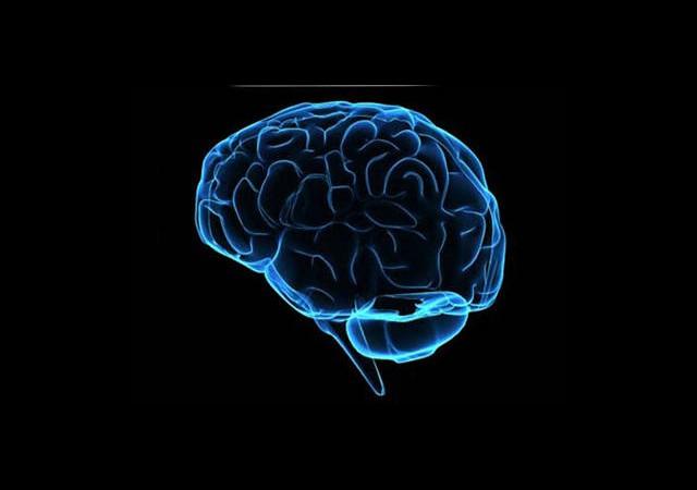 Beyin Ölüm Anında Böyle Tepki Veriyor!