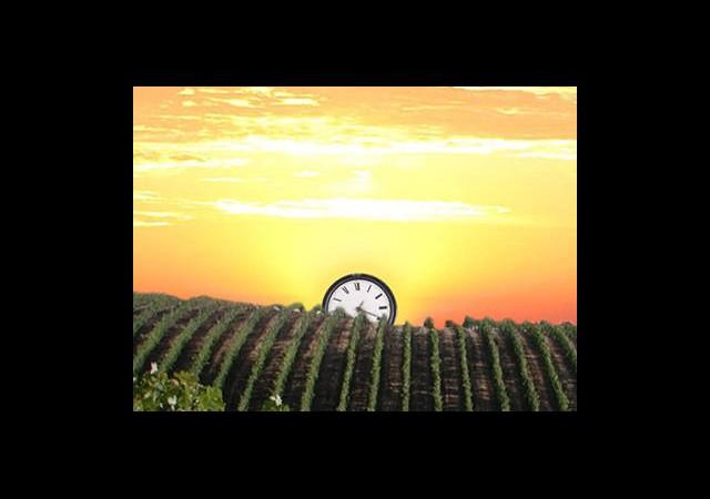 Yaz Saati Biyolojik Saati Etkiliyor