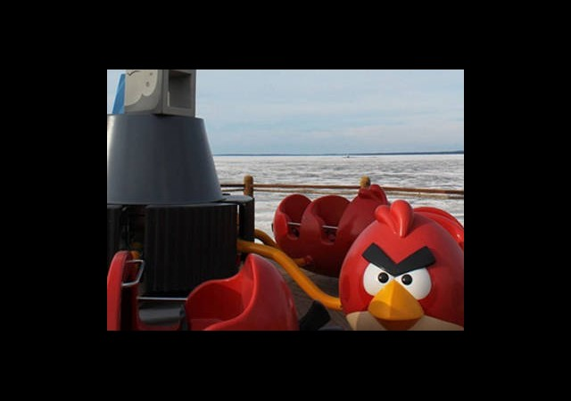 Angry Birds Çılgınlığı Tam Gaz Devam
