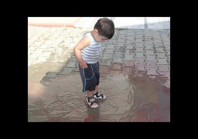 Su birikintilerindeki ölümcül tehlike!