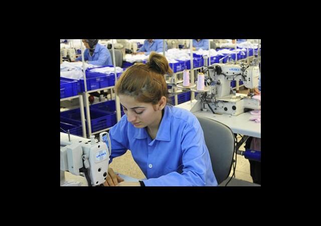2023'te 7 Milyon Kadın Çalışan