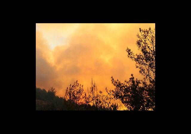 Çanakkale'de Yangın Yeniden Başladı