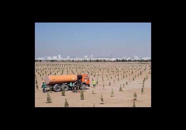 Türkmenistan'da Çöle Karşı Savaş