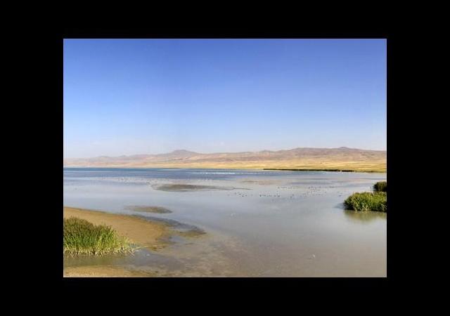 Erçek Gölü'nde fay hattı İncelenecek