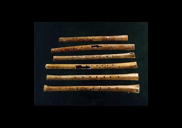 İşte Dünyanın En Eski Müzik Aleti