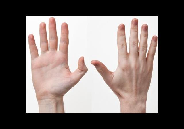 Eğer İşaret Parmağınız Uzunsa...