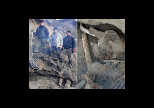 30 Bin Yıllık Mamut İskeletini 11 Yaşındaki Çocuk Buldu