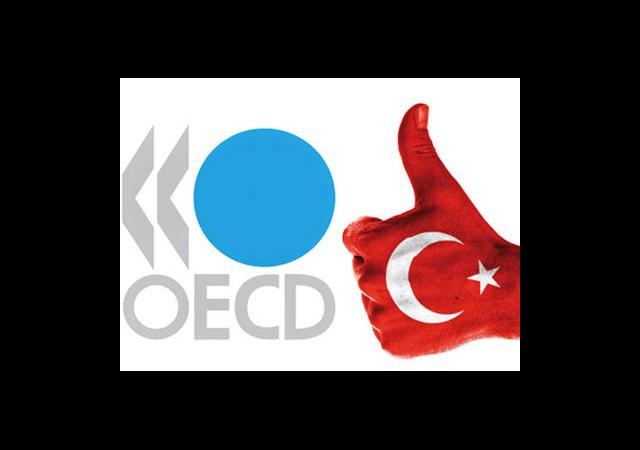 OECD'nin En Büyüğü Türkiye