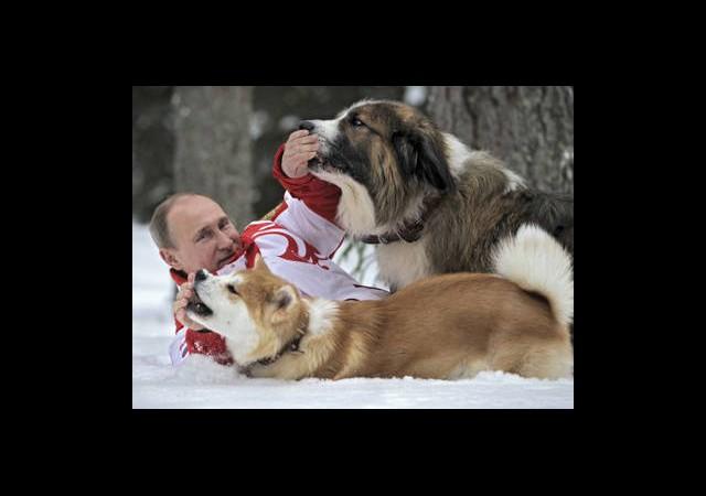 Putin'in Köpekleri Sosyal Medyada!