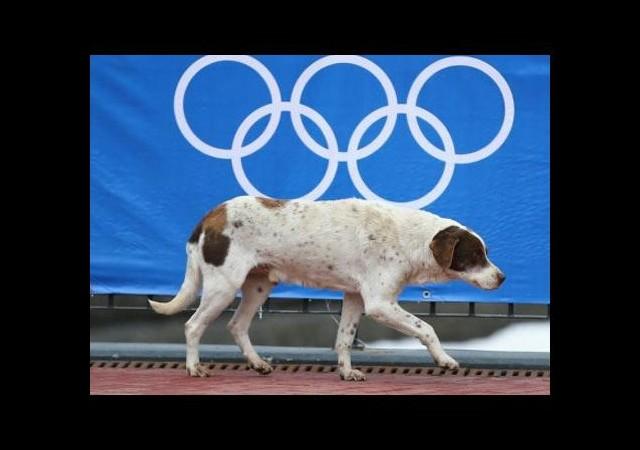 Rusya'da Olimpiyat katliamı!