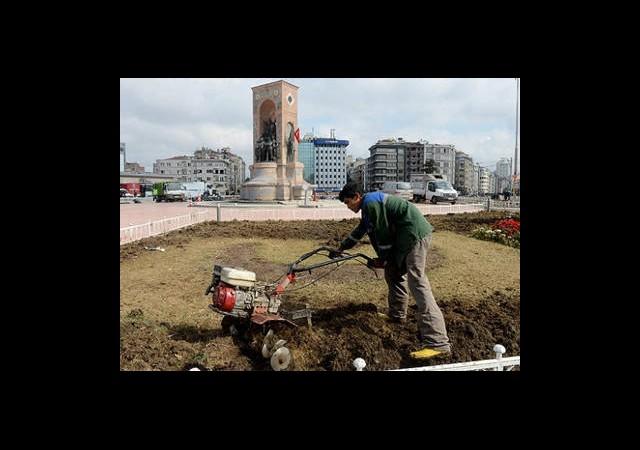 Taksim'de Ağaçlandırma Çalışmaları Başladı