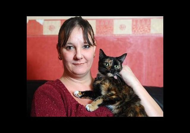 Kahraman Kedi, Sahibini Kurtardı