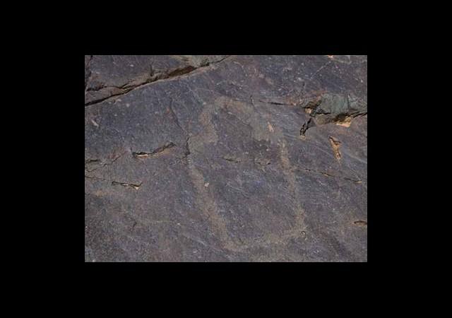 10 Bin Yıllık Türk Çizimleri Ortaya Çıktı