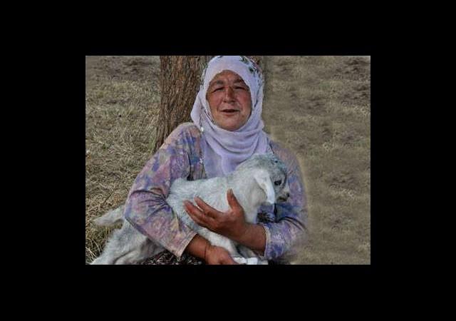 Kitap Kurdu Çobana Bakanlık'tan Ödül