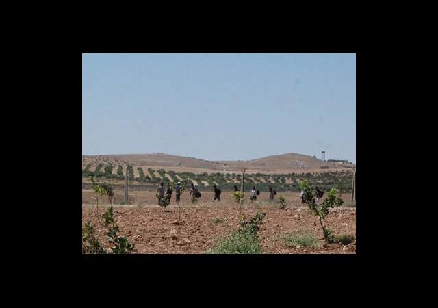 Sınırlarda Bin 389 Kaçak Kakalandı