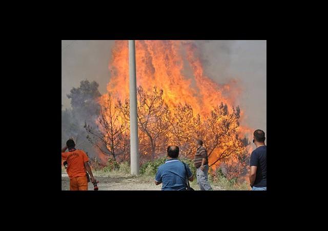 Yangına Müdahale İmkanına Kavuştuk