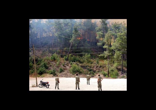 Türkiye-Suriye Sınırında Yangın