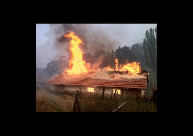 En Az 100 Hektar Orman Yandı