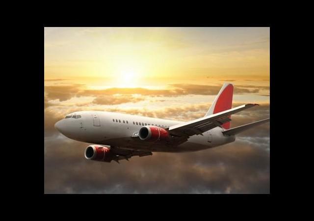 Uçakta Doğum Yaptı