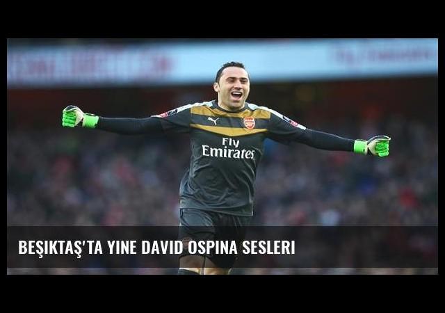 Beşiktaş'ta yine David Ospina sesleri
