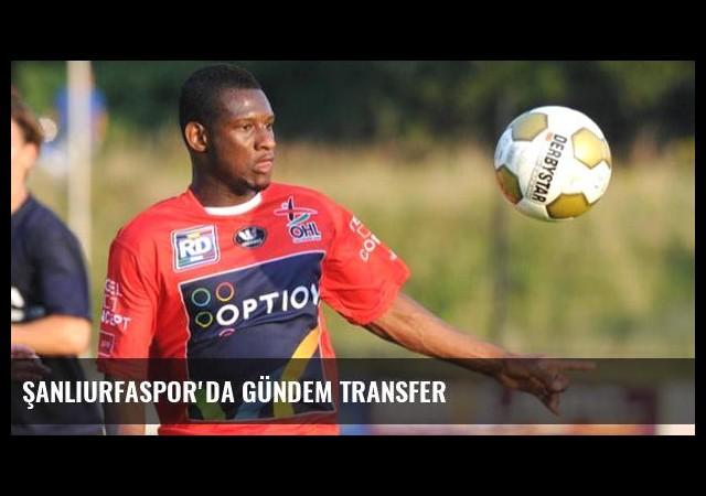 Şanlıurfaspor'da gündem transfer