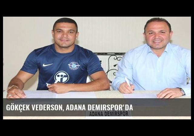 Gökçek Vederson, Adana Demirspor'da