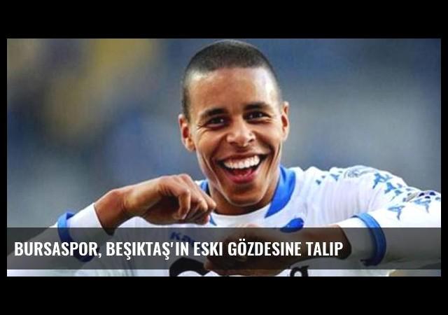 Bursaspor, Beşiktaş'ın eski gözdesine talip