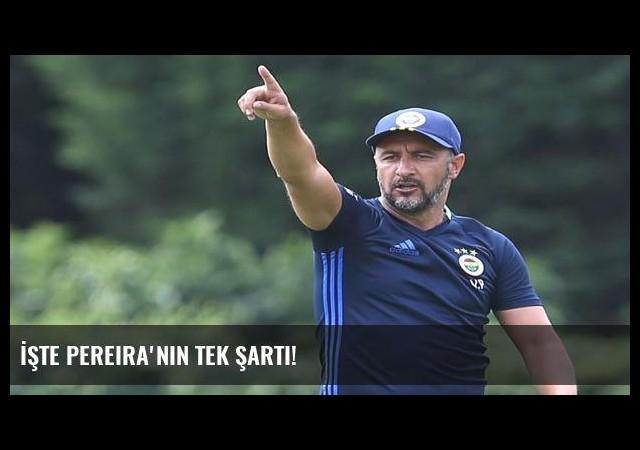 İşte Pereira'nın tek şartı!