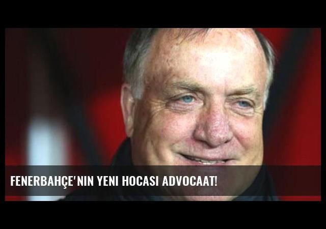 Fenerbahçe'nin yeni hocası Advocaat!
