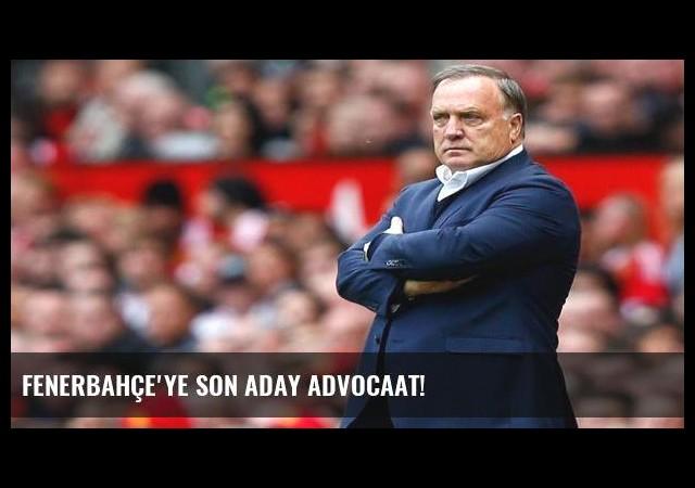 Fenerbahçe'ye son aday Advocaat!