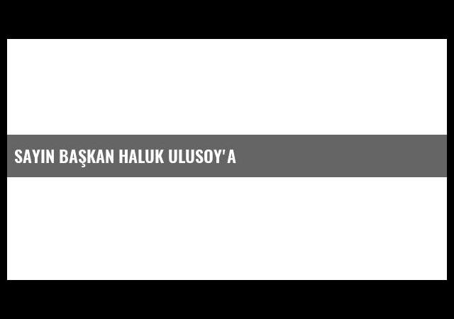 Sayın Başkan Haluk Ulusoy'a