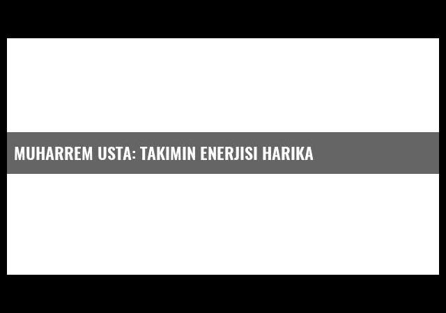Muharrem Usta: Takımın enerjisi harika