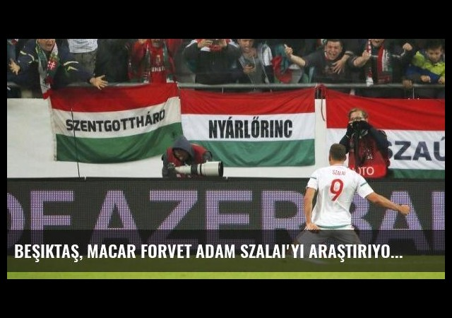 Beşiktaş, Macar Forvet Adam Szalai'yi Araştırıyor