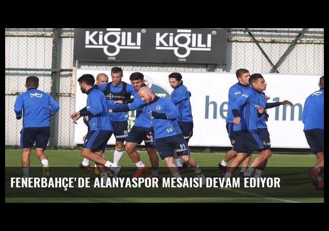 Fenerbahçe'de Alanyaspor mesaisi devam ediyor