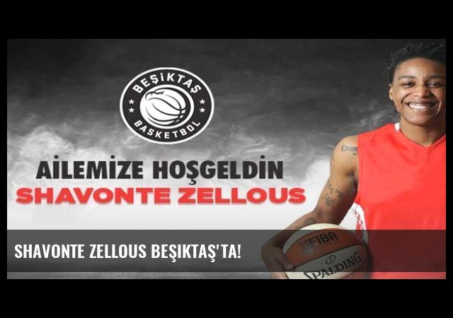Shavonte Zellous Beşiktaş'ta!
