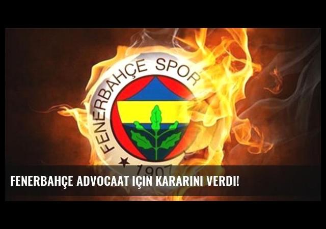 Fenerbahçe Advocaat için kararını verdi!