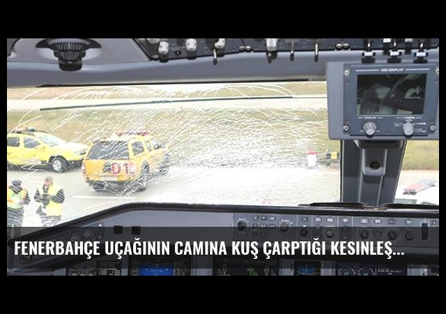 Fenerbahçe Uçağının Camına Kuş Çarptığı Kesinleşti