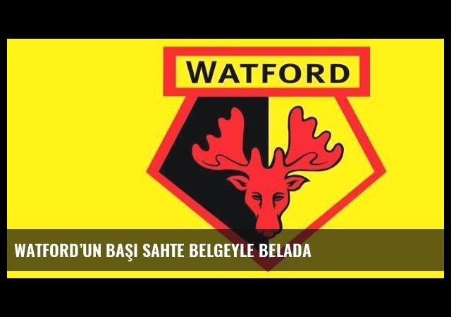 Watford'un başı sahte belgeyle belada
