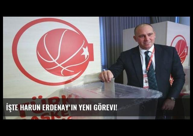 İşte Harun Erdenay'ın yeni görevi!