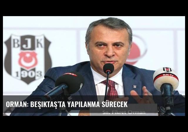 Orman: Beşiktaş'ta yapılanma sürecek